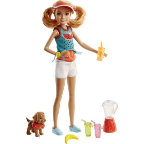 Barbie Αδελφούλες Επαγγέλματα και Αξεσουάρ κούκλα Stacie™ (FHP61)