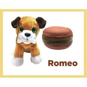 Sweet Pups Γλυκιά Έκπληξη με Σκυλάκι Romeo