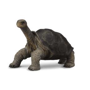 CollectA Χελώνα Νησιού Πίντα 7cm 88619