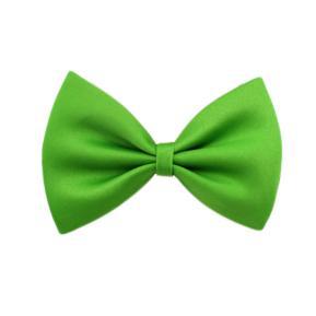 Αποκριάτικο Παπιγιόν πράσινο